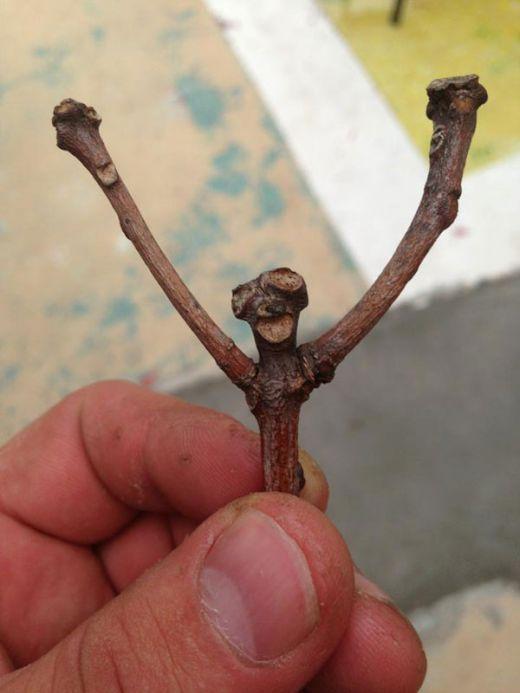 happy-stick_s