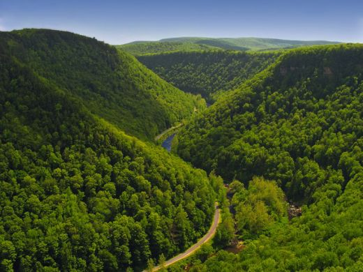 meandering-pine-creek-gorge-tioga-county-pa-usa_s