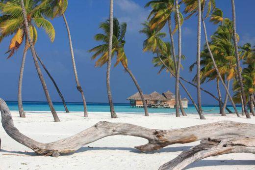 soneva-gili-maldives-resort-six-senses-7_s