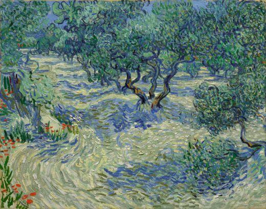 vincent_van_gogh_-_olive_orchard_s