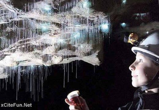 2043,xcitefun-cave-waitomo-glowworm-new-zealand-2_s