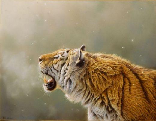 Eric-Wilson-wildlife2-550x425_s