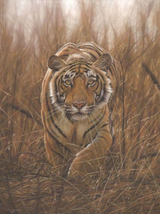 Eric-Wilson-wildlife3-550x733_s