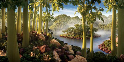 celery-island-carl-warner_s