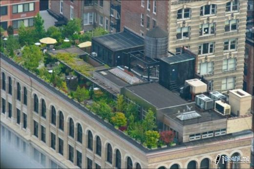 garden_roof_tops_10_s