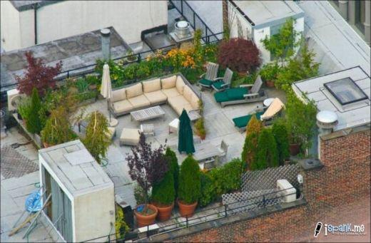 garden_roof_tops_11_s