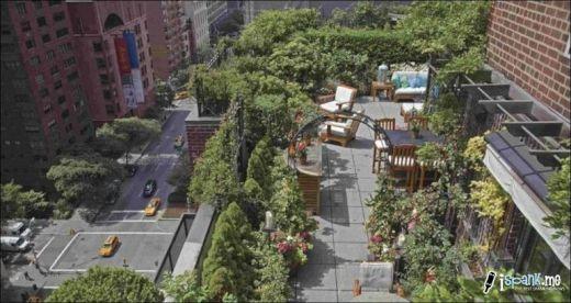 garden_roof_tops_15_s