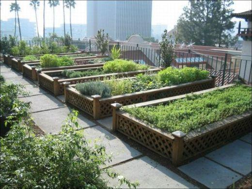 garden_roof_tops_23_s