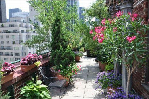 garden_roof_tops_25_s