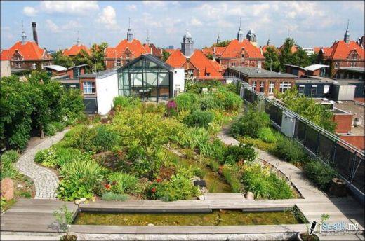 garden_roof_tops_28_s