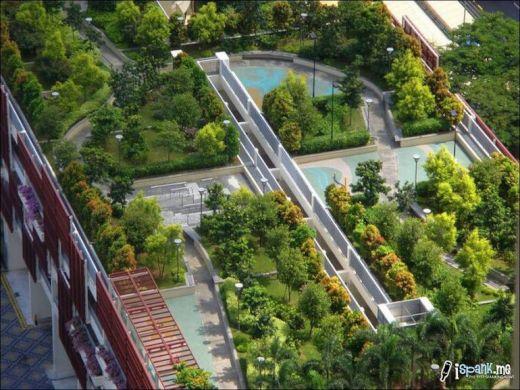 garden_roof_tops_29_s