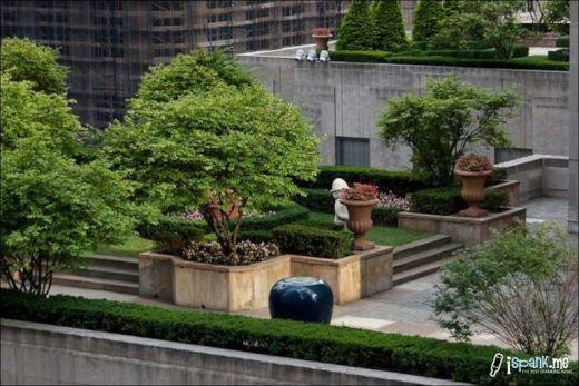 garden_roof_tops_33_s