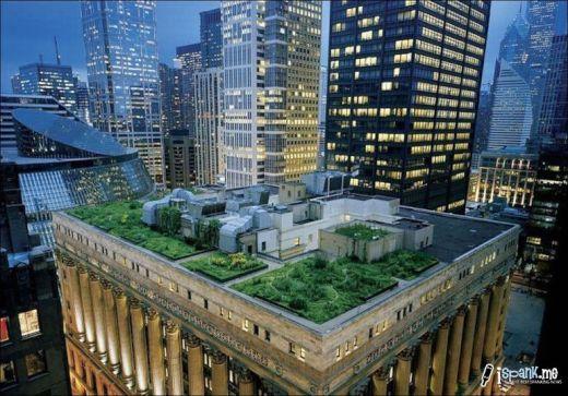 garden_roof_tops_3_s
