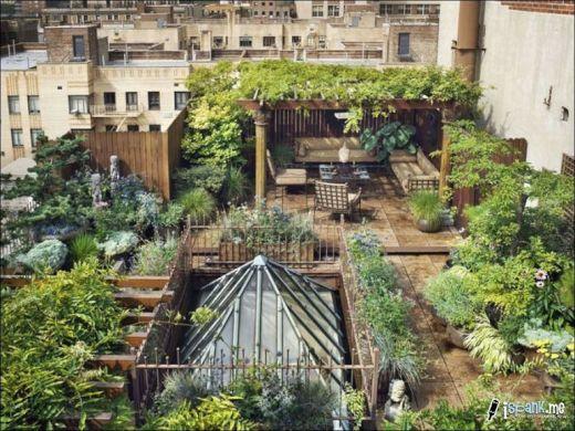garden_roof_tops_40_s