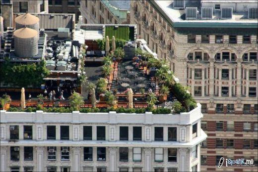garden_roof_tops_41_s