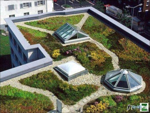 garden_roof_tops_6_s