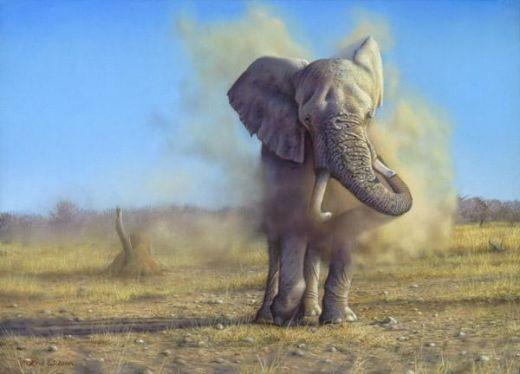 namibian-elephant-dusting-eric-wilson_s
