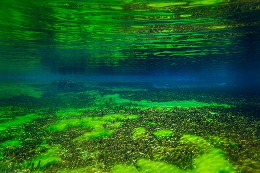 【美しい】最近発見された世界で最もきれいな湖【ニュージーランド】