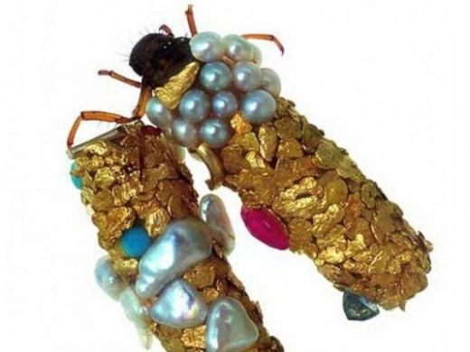 Caddisfly-jewelry2-550x412_s