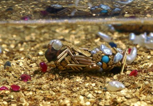Caddisfly-jewelry_s
