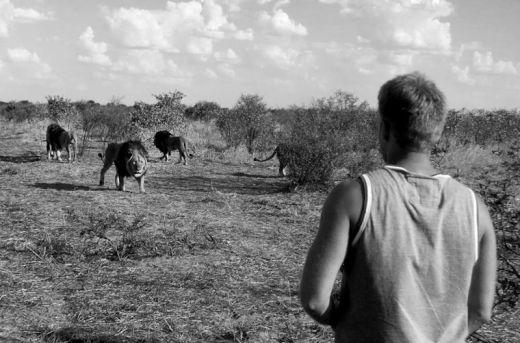 lion-whisperers-modisa-botswana-by-nicolai-frederk-bonnen-rossen-17_s