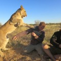 lion-whisperers-modisa-botswana-by-nicolai-frederk-bonnen-rossen-6_s