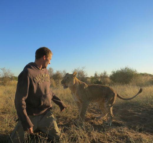lion-whisperers-modisa-botswana-by-nicolai-frederk-bonnen-rossen-9_s