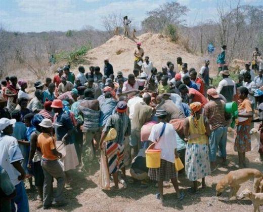 zimbabwe_elephant_05_s