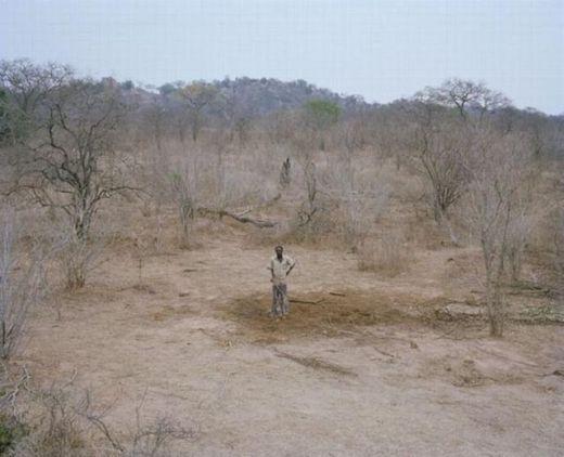 zimbabwe_elephant_09_s