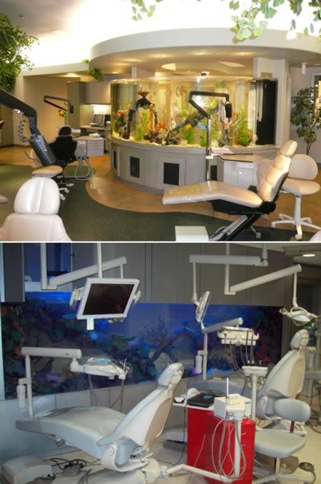 a98360_clinic_7-aquarium