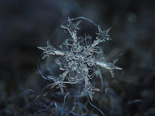 【鮮明】あまりにも美しい雪の結晶の画像10選【写真】