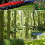 【広大】世界で最も魅力的な庭園:トップ10【楽園】